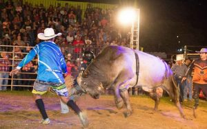 XIII Rodeio Festival de Virgínia e 1º Trilhão beneficente - 2017